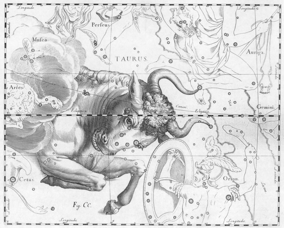 Taurus Star Sign - the BullJohannes Hevelius drew the constellation Canes Venatici in Uranographia, his celestial catalogue in 1690.