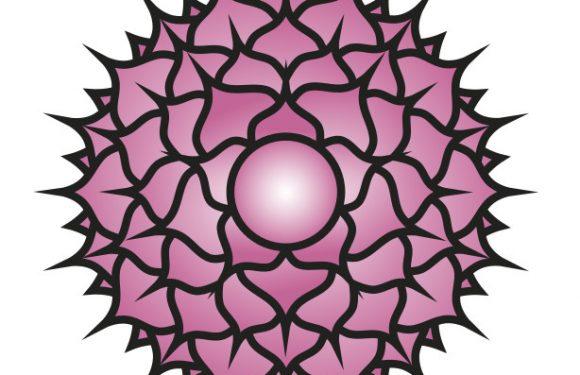 Sahasrara – Crown Chakra