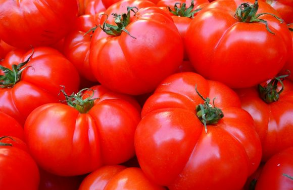 Cooked tomatoes may cut cancer risk