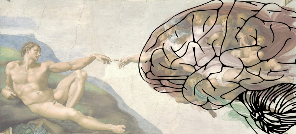 The Human Brain in the Creation of Adam - Michelangelo