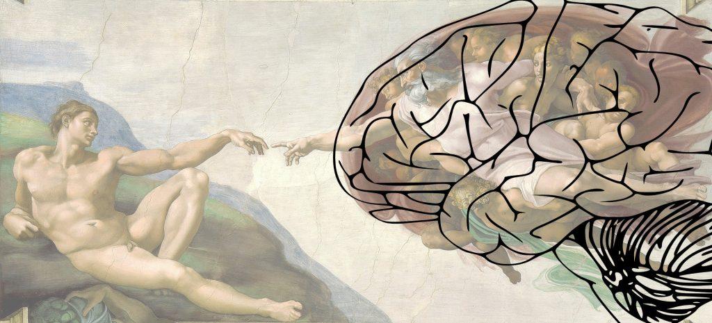 The Human Brain in the Creation of Adam - Michelangelo